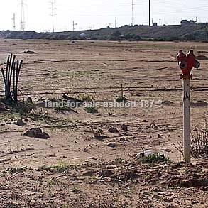 אשדוד מגרשים למכירה מספר קטלוגי 187