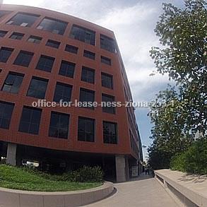 משרדים להשכרה בנס ציונה מספר קטלוגי 253